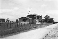 19.07.1931