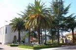 Borgo Podgora